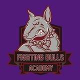 Fighting Bulls Academy - logo