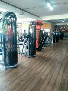 Academia Animal Gym Nova Cintra -