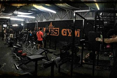 Wolves Power Fitness -