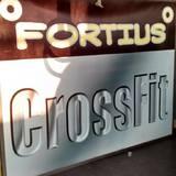 Crossfit Fortius Satélite - logo