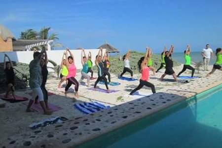 Krishna Yoga