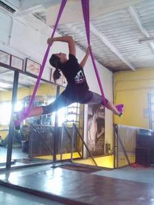 Polo Gym -