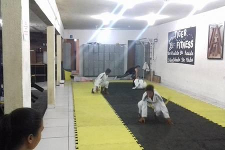 Academia Tiger Fitness -