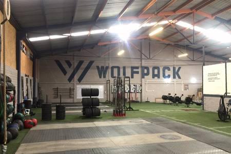Wolves Juriquilla -