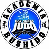 Academia Bushidô - logo