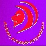 King Studio Fitness - logo