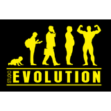 Studio Evolution - logo