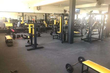 Yellow Fit - Musculação e Treinamento Aeróbico