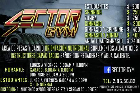 Sector GYM