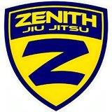 Zenith – Filial Castelo Branco - logo