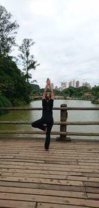 Equilíbrio Total - Bosque Maia -