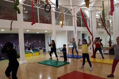 Pole and Art Dance Fitness and Entertainment -