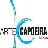 Arte Y Capoeira Ermita - logo