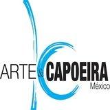 Arte & Capoeira Roma Sur - logo