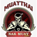 Ct Nak Muay Team - logo