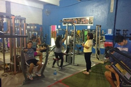 Warriors Gym & Fitness -