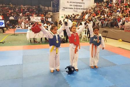 Aztecas Taekwondo Los Naranjos