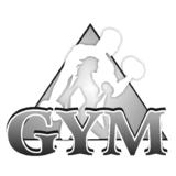Gym Academia - logo