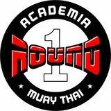 Academia Round One - logo